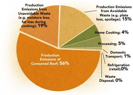emissions_during_production