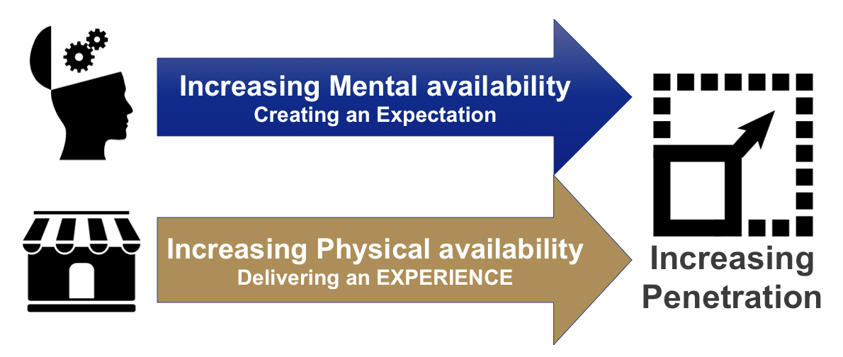 Mental and Physical availability